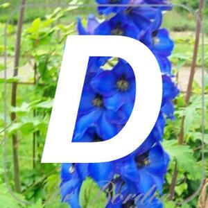 planten D