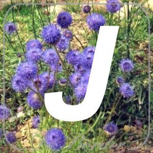 planten J