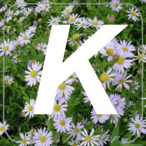 planten K