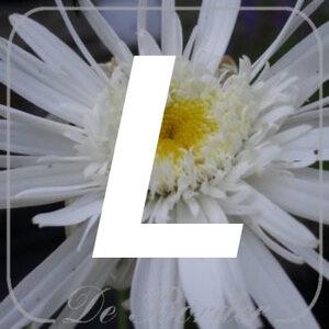 planten L