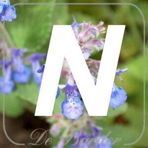 planten N